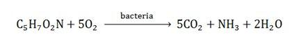 اکسیژن خواهی بیوشیمیایی (BOD)